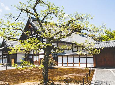 日本本州尊享游6天